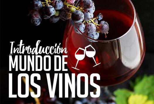 Introducción al mundo de los vinos