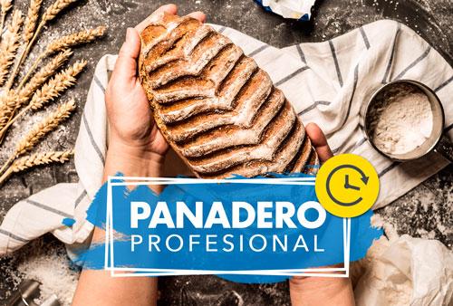 PANADERO PROFESIONAL INTENSIVO VERANO